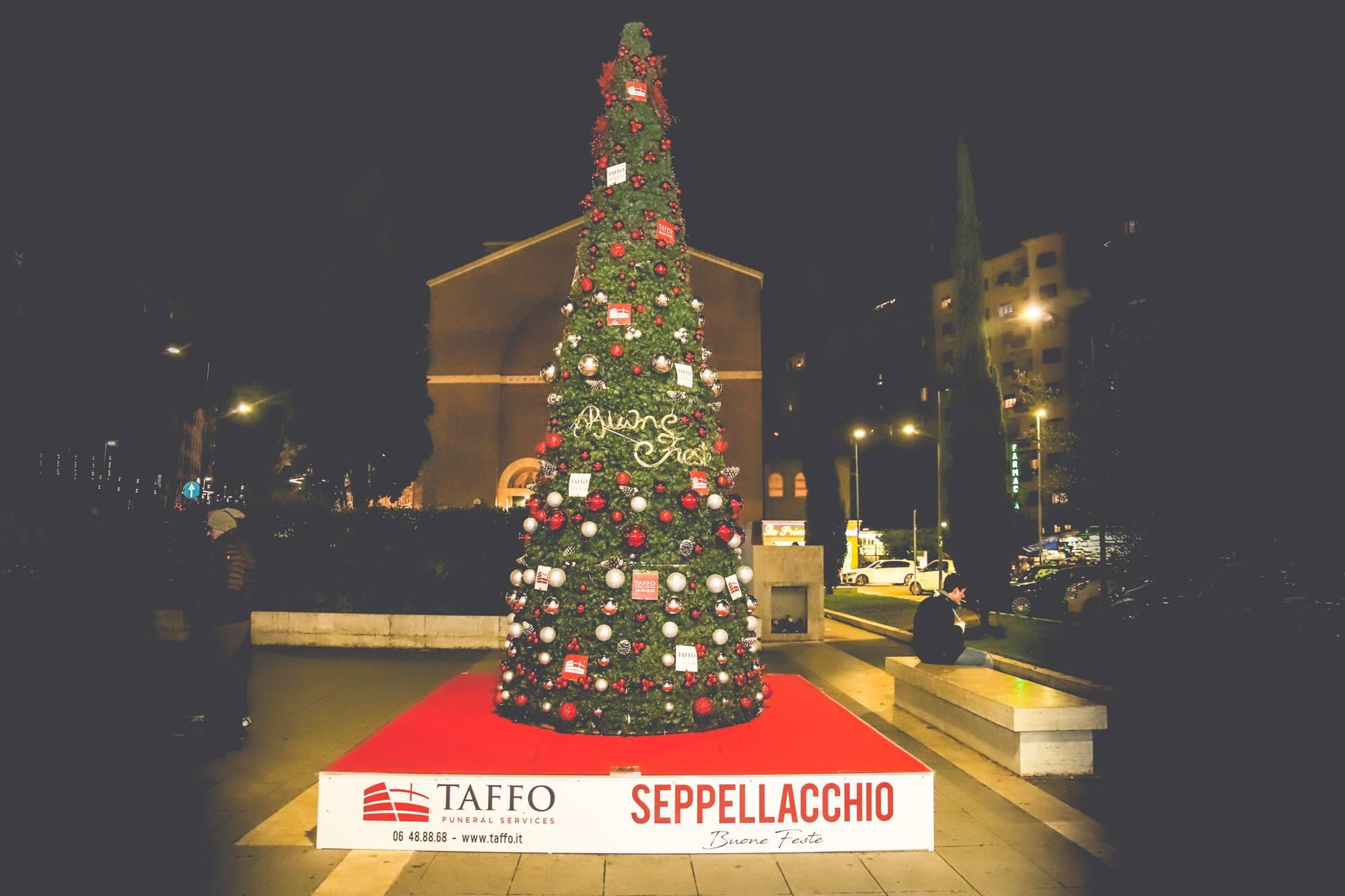 seppellacchio-taffo-wwf